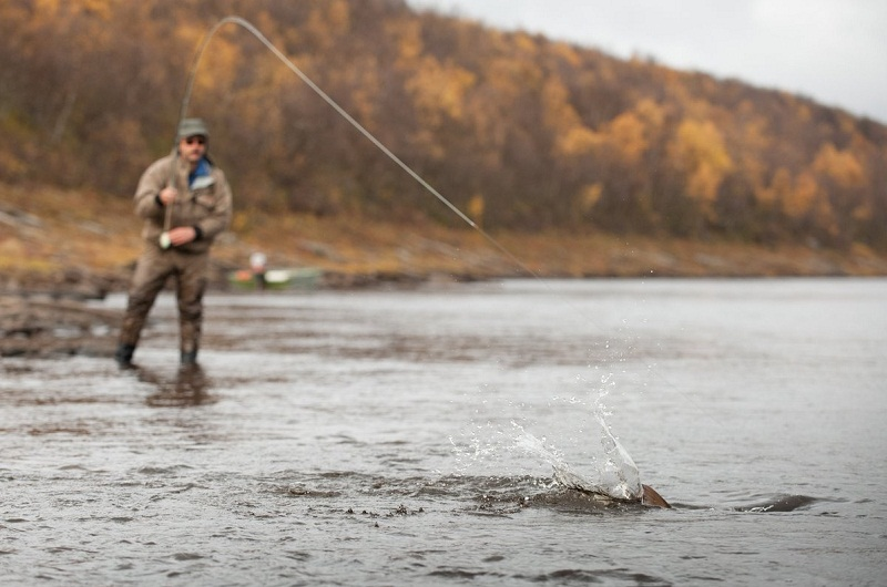 рыбалка на Рябоге Рыбалка на Поное