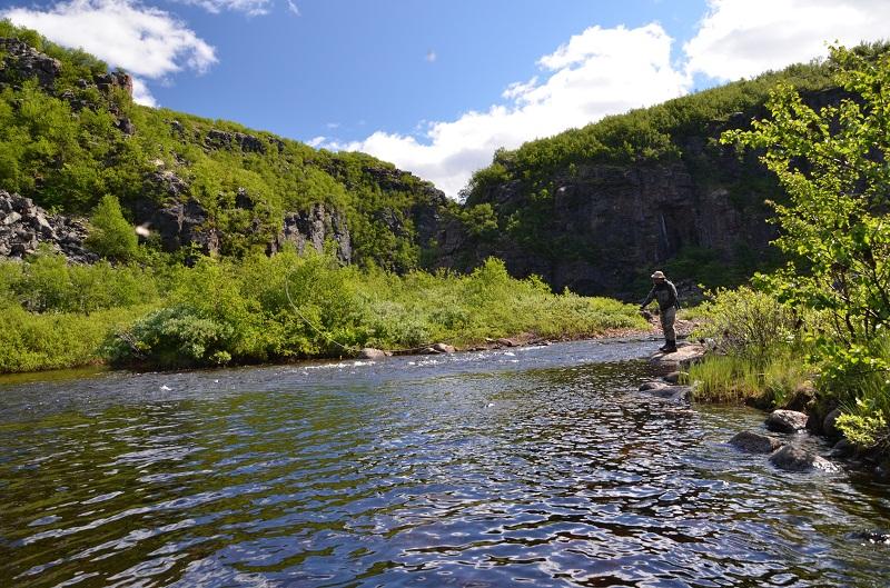 приток йоканьги река Пулоньга2