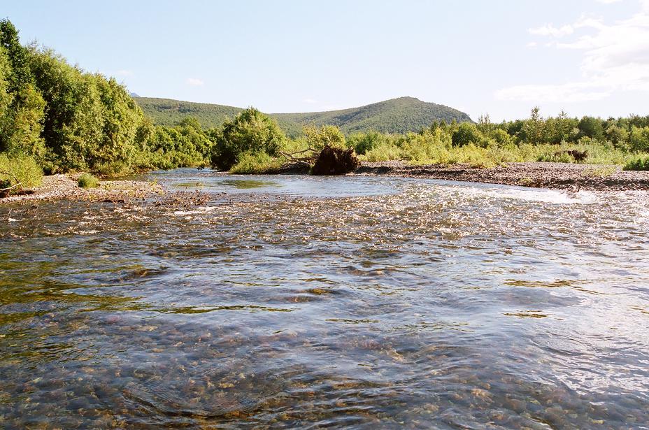 камчатка, рыболовные туры и рыбалка на базе Таловая