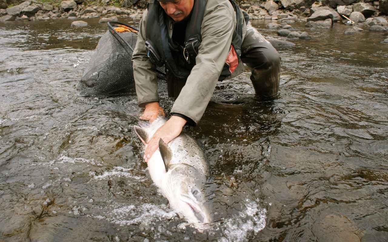 поиск рыболовного тура