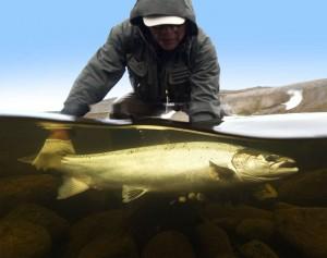 рыболовные туры и рыбалка Кольский полуостров река Харловка
