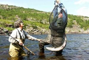 рыболовные туры и рыбалка Кольский реки Харловка и Восточоная Лица