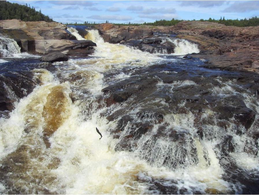 река Стрельна водопад
