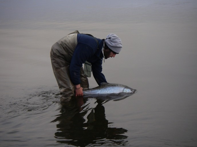 ловля морской форели