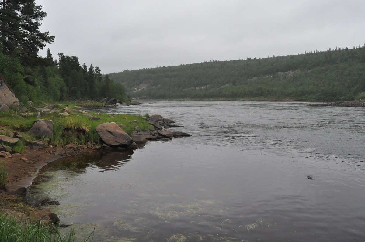 река Поной, Жениховский порог, лагерь Пача