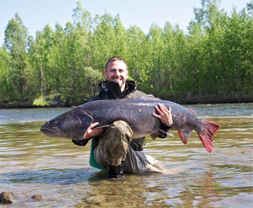 Рыбалка в Хабаровском крае. Ловля тайменя