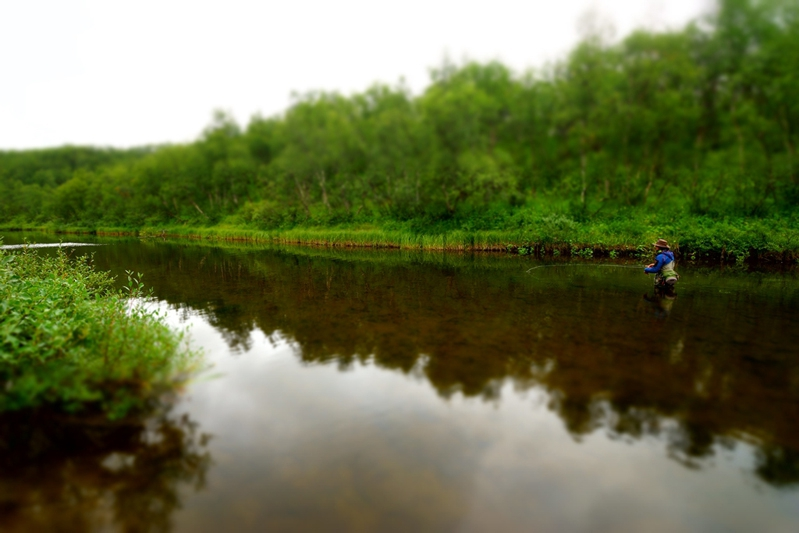 река Белоусиха, природа, рыбалка на Кольском полуострове