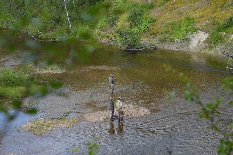 река Белоусиха, природа 4