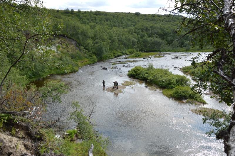 река Белоусиха природа 5