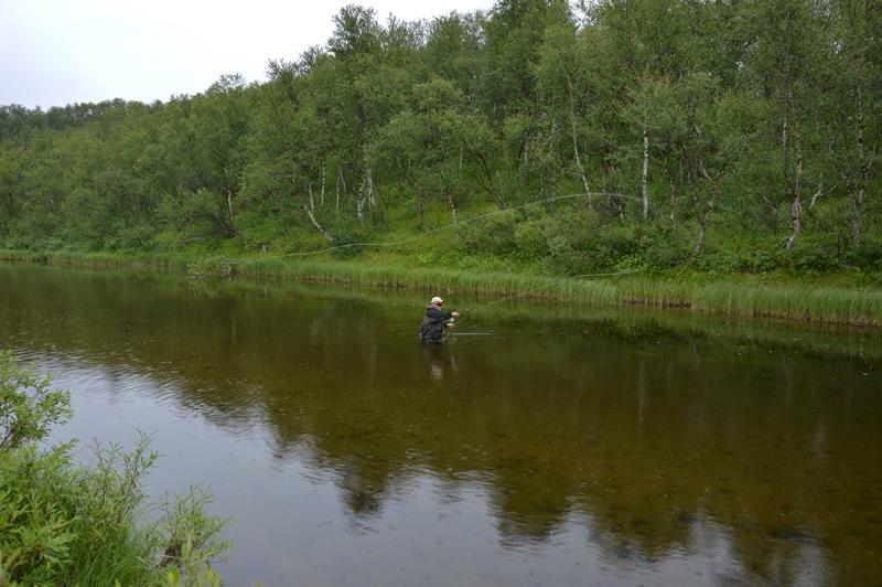 река Белоусиха, природа 6