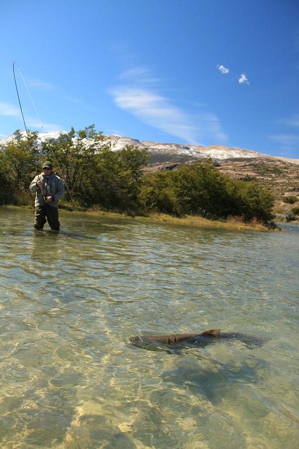 рыбалка в Аргентине. Ловля лосося и форели в Аргентине.