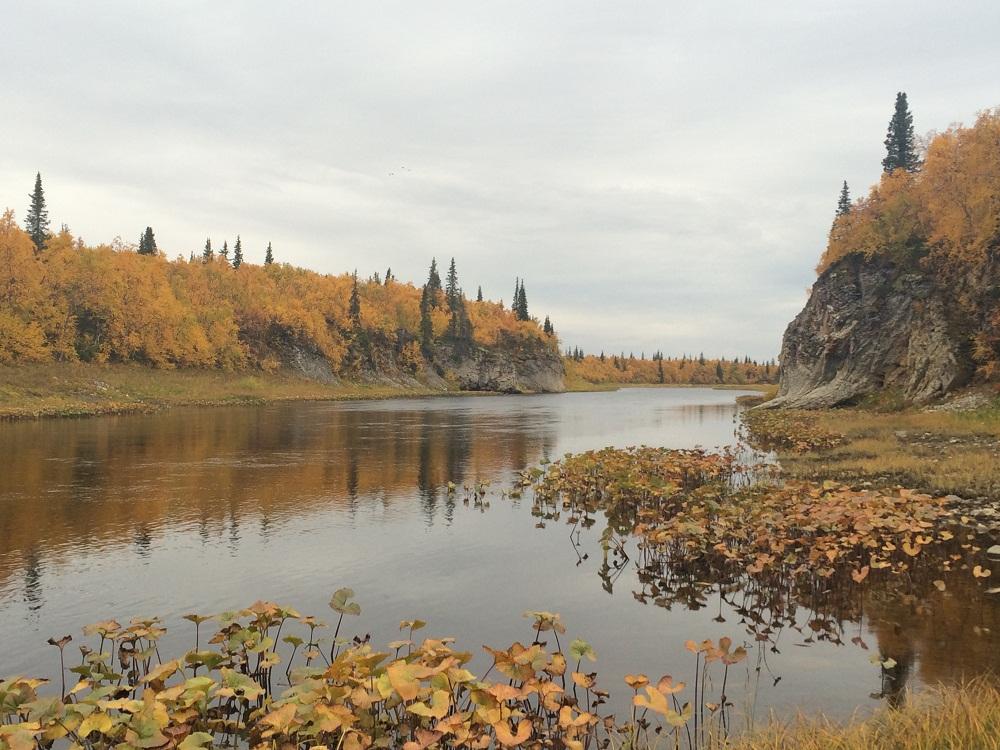 Рыбалка в Архангельской области. река Волонга.