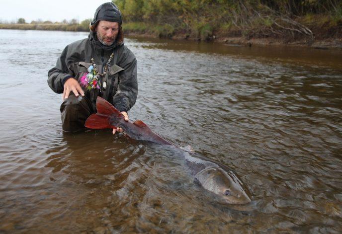 рыбалка в Хабаровском крае. рыболовный тур таймень.