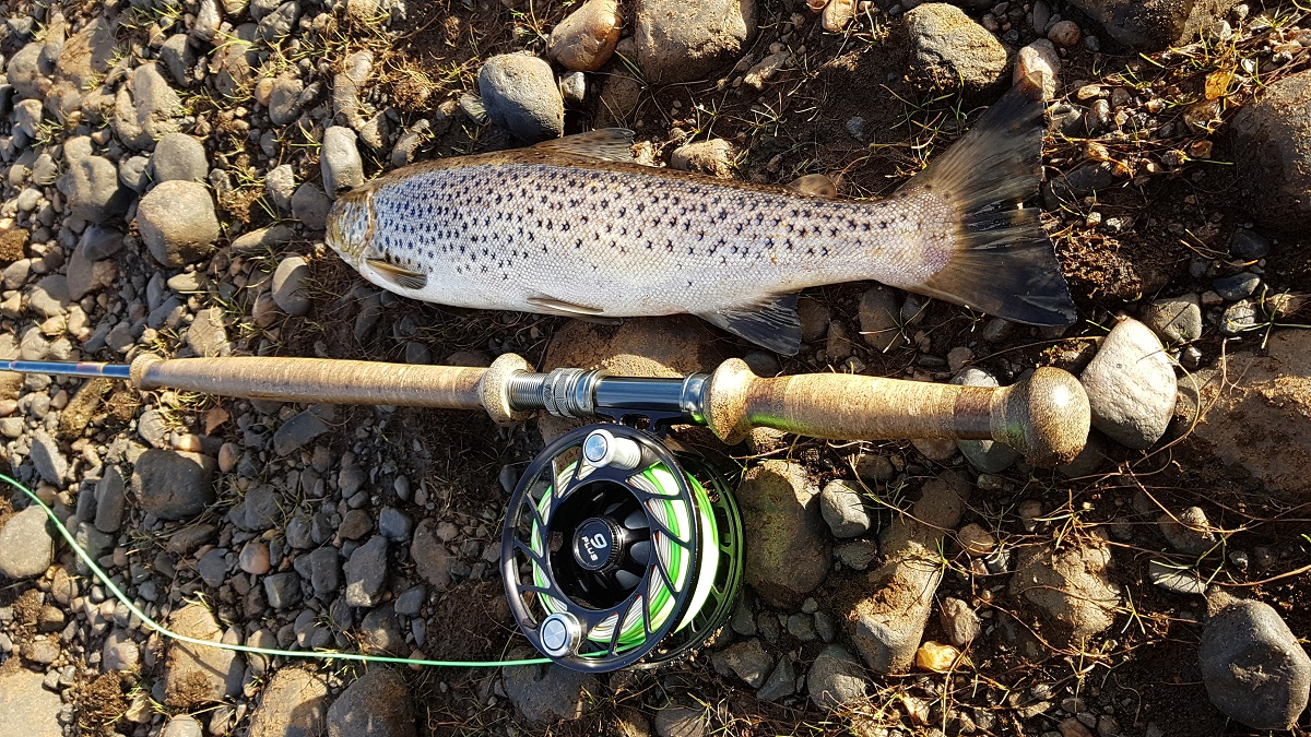 Рыбалка на Кольском полуострове, на Поное. Ловля атлантического лосося (семги), хариуса, кумжи. Рыболовный лагерь на реке Поной.