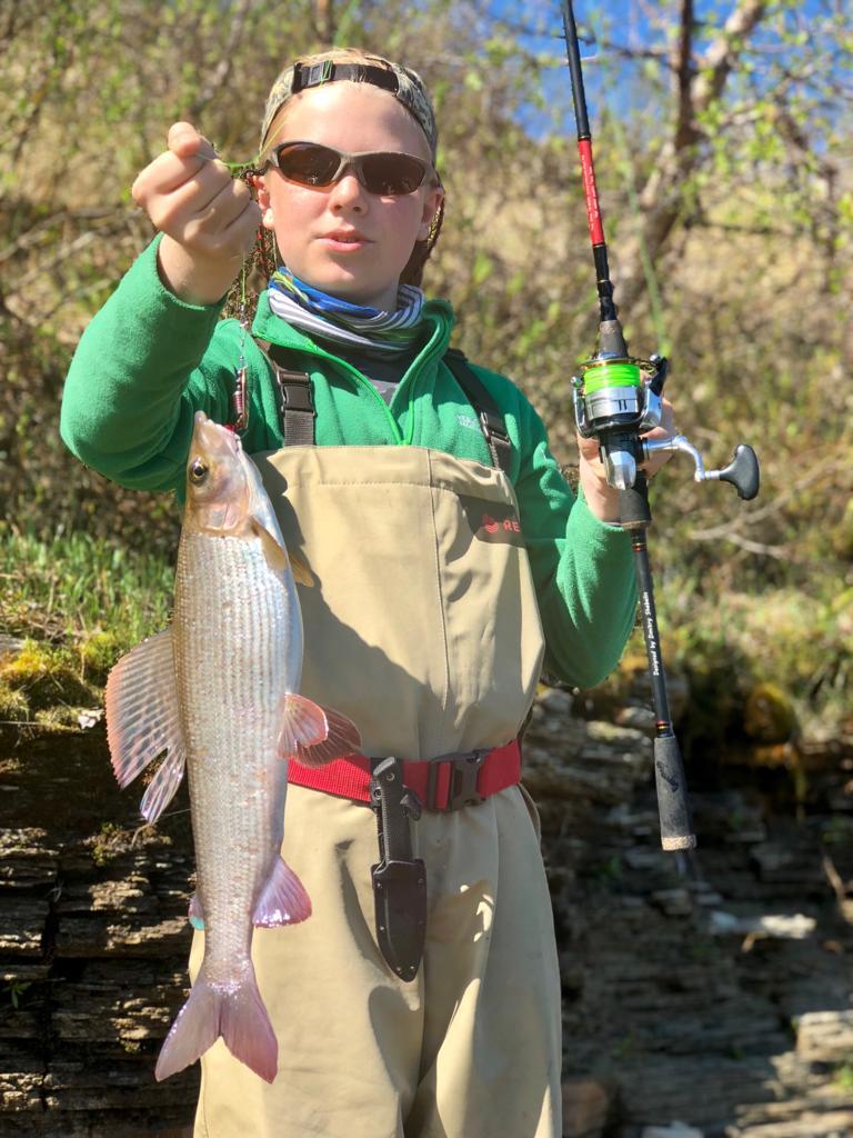 рыбалка в Архангельской области. Ловля хариуса и лосося.
